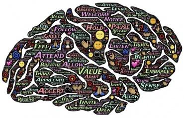 Regie over je brein!